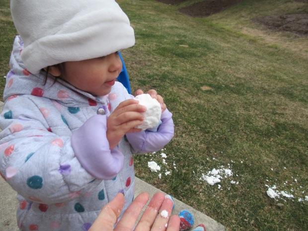 2 Ingredient Snowballs (8)