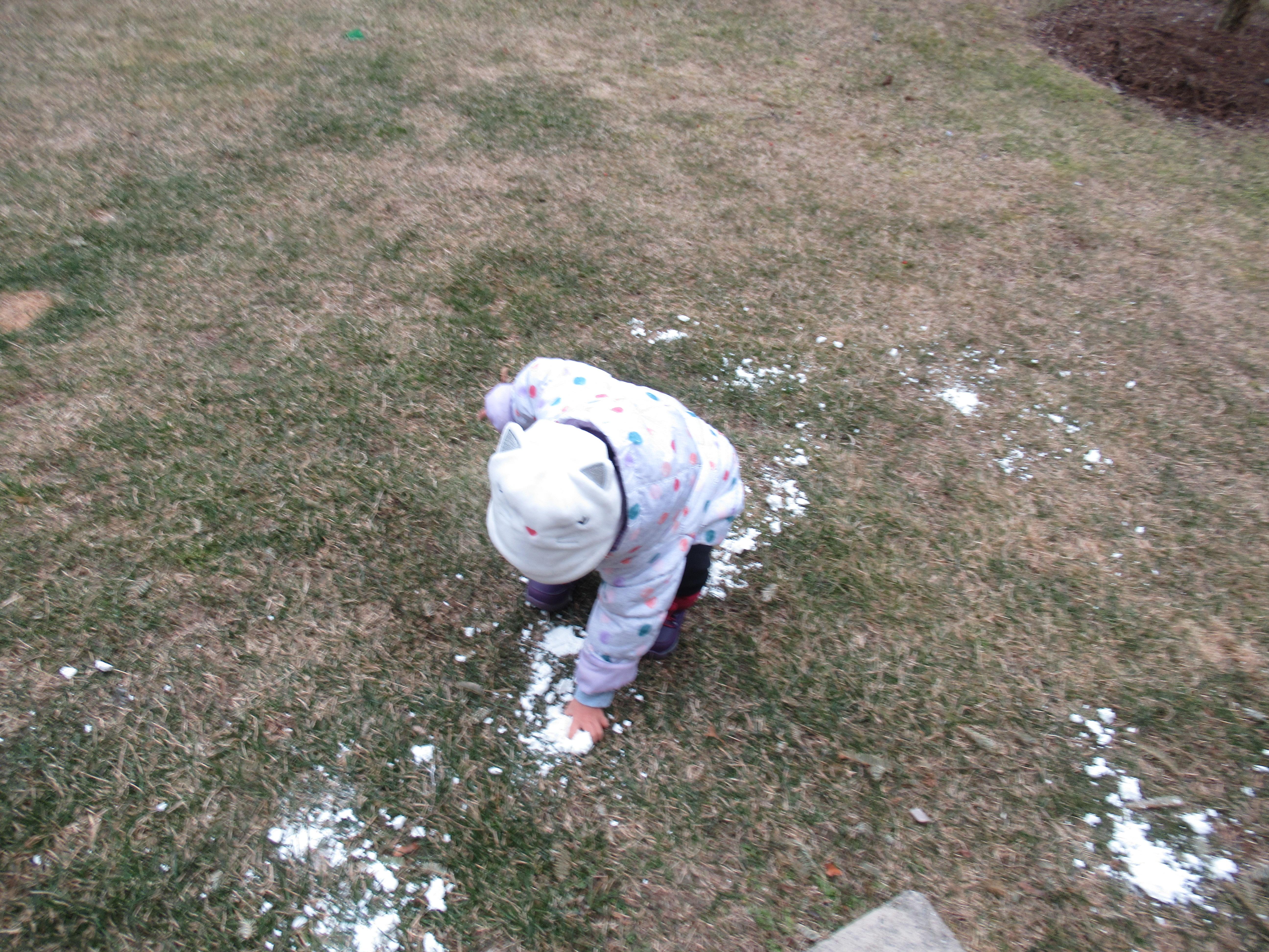 2 Ingredient Snowballs (9)