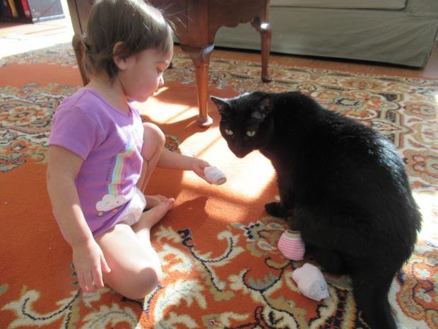Cat Games (9)