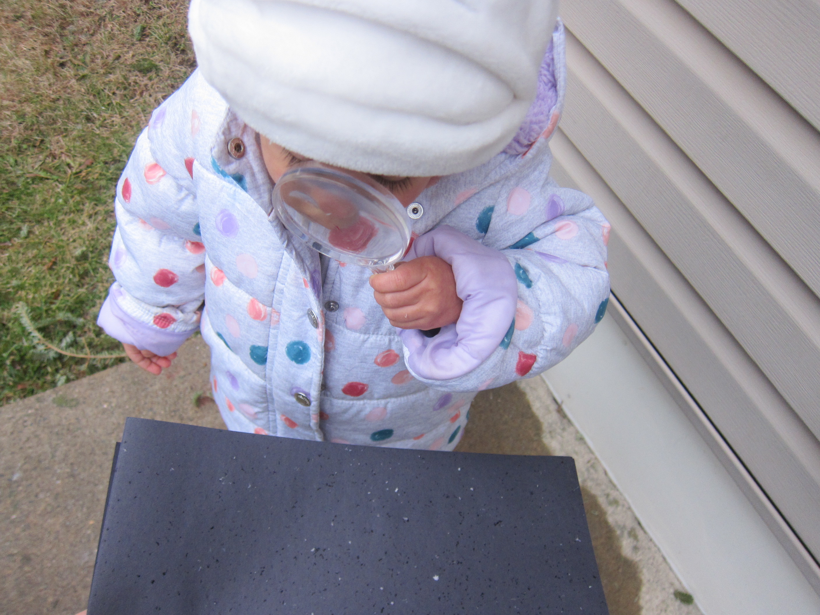 Catching Snowflakes (5)