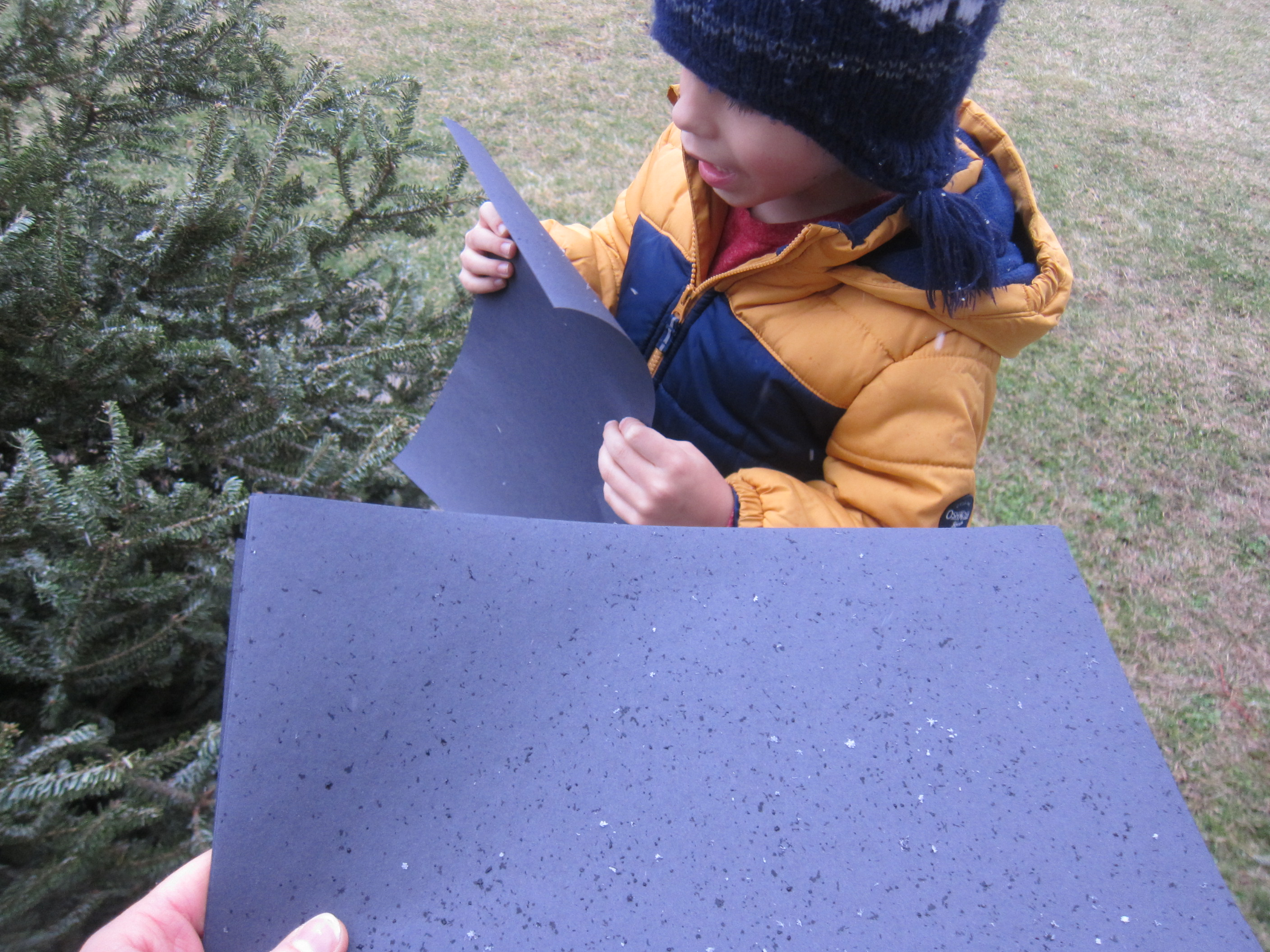Catching Snowflakes (6)