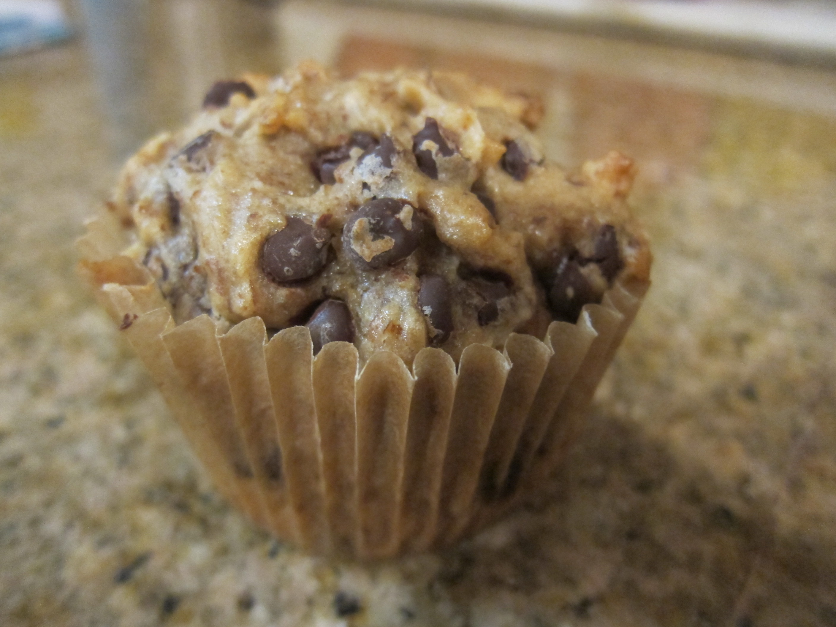 Coconut Chocolate Chip Muffins (1)