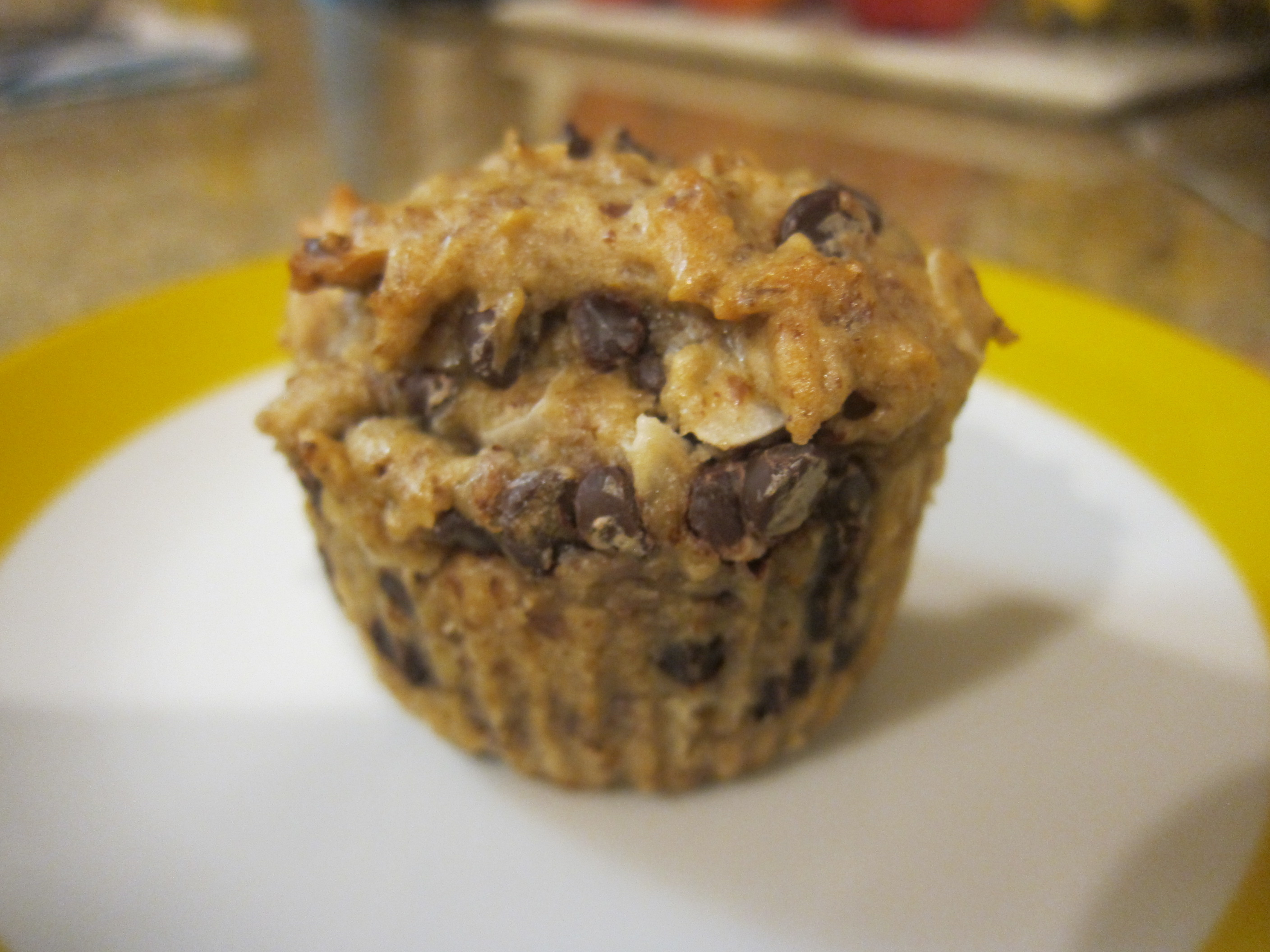 Coconut Chocolate Chip Muffins (2)