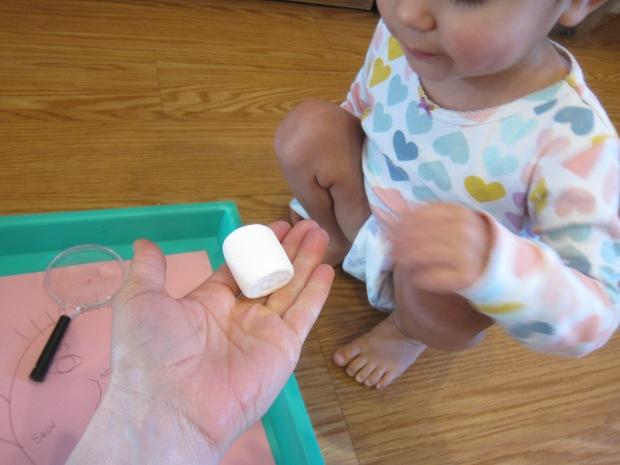 Marshmallow Senses (2)