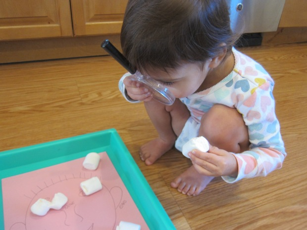 Marshmallow Senses (6)