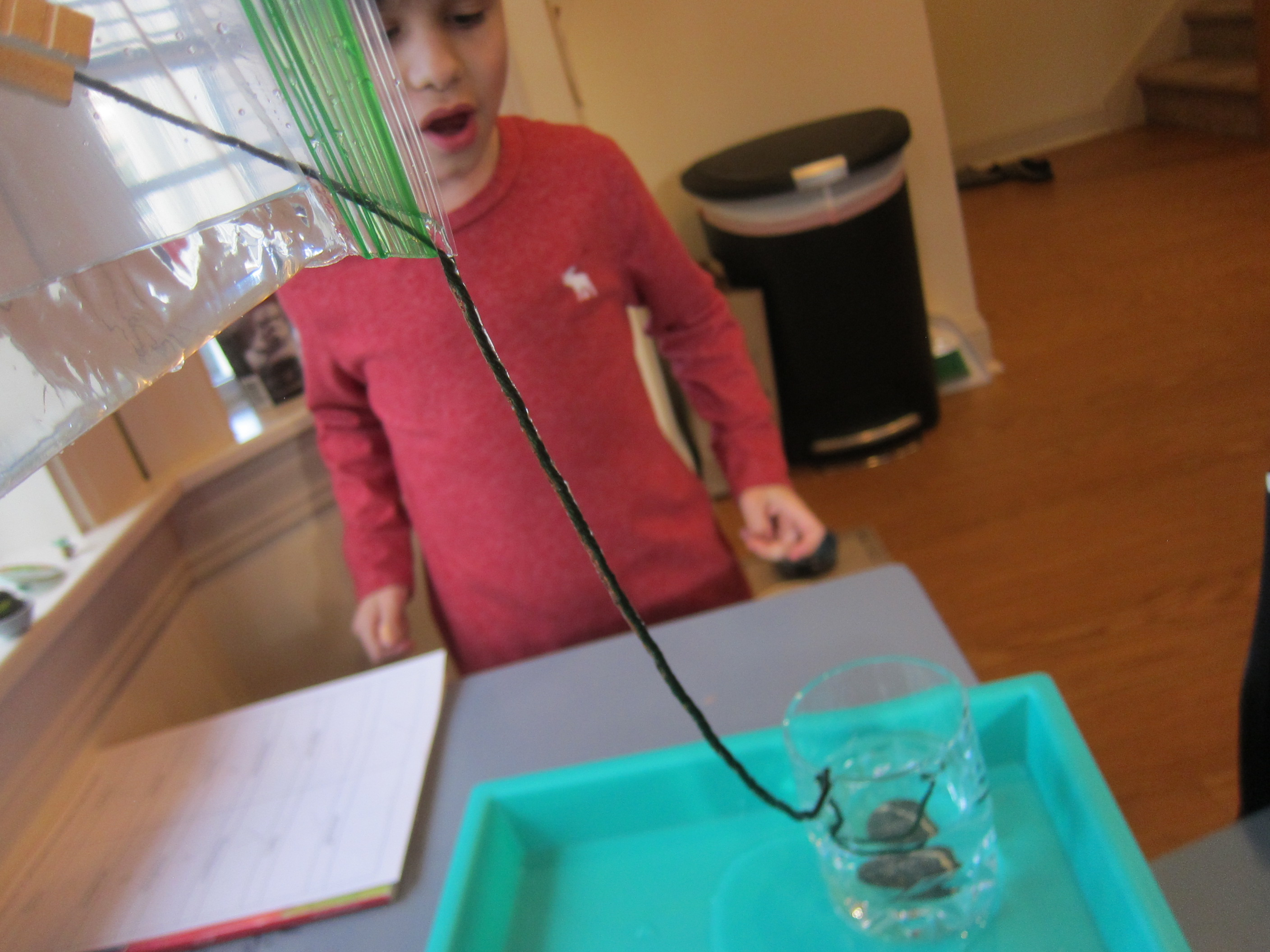 Water Bag Experiment (7)