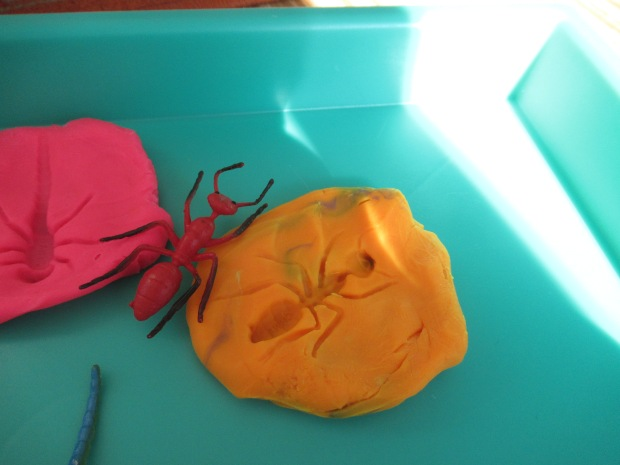 Bug Fossil Play Dough (3)