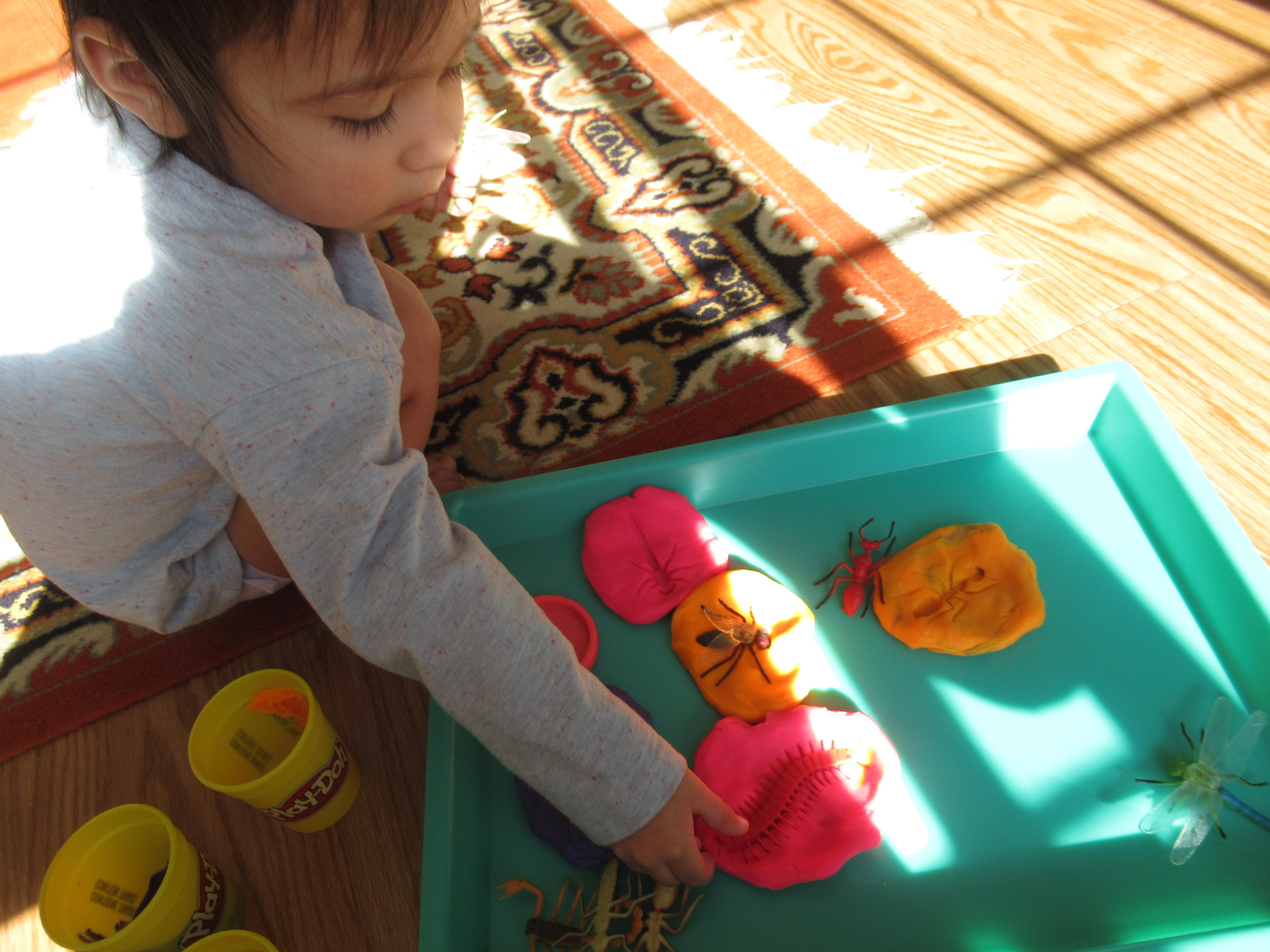 Bug Fossil Play Dough (4)