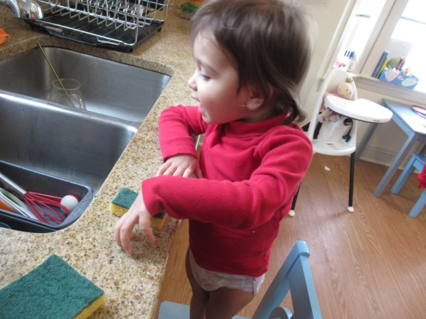 How to Wash Dishes (2)