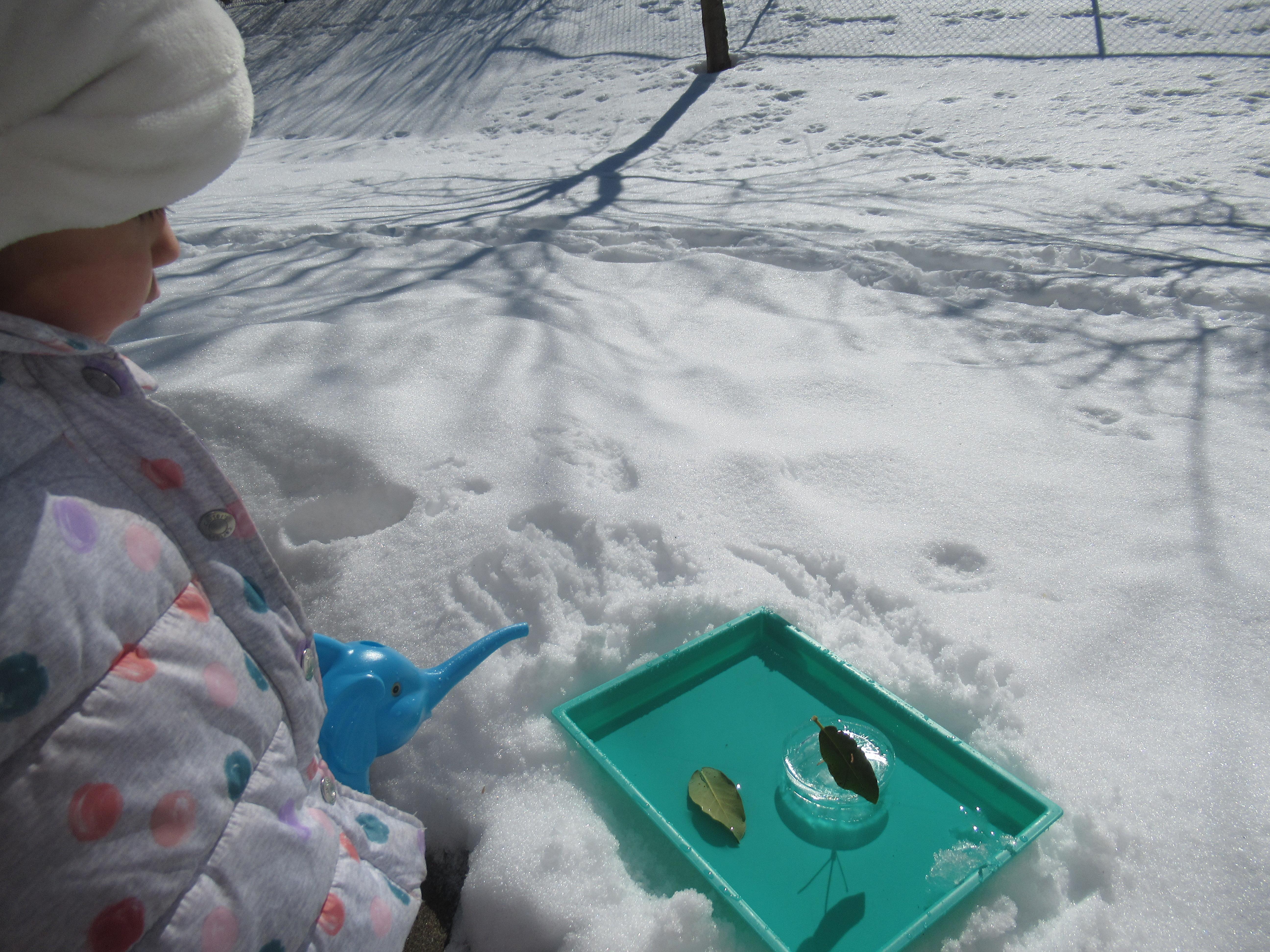 Natural Ice Boats (4)
