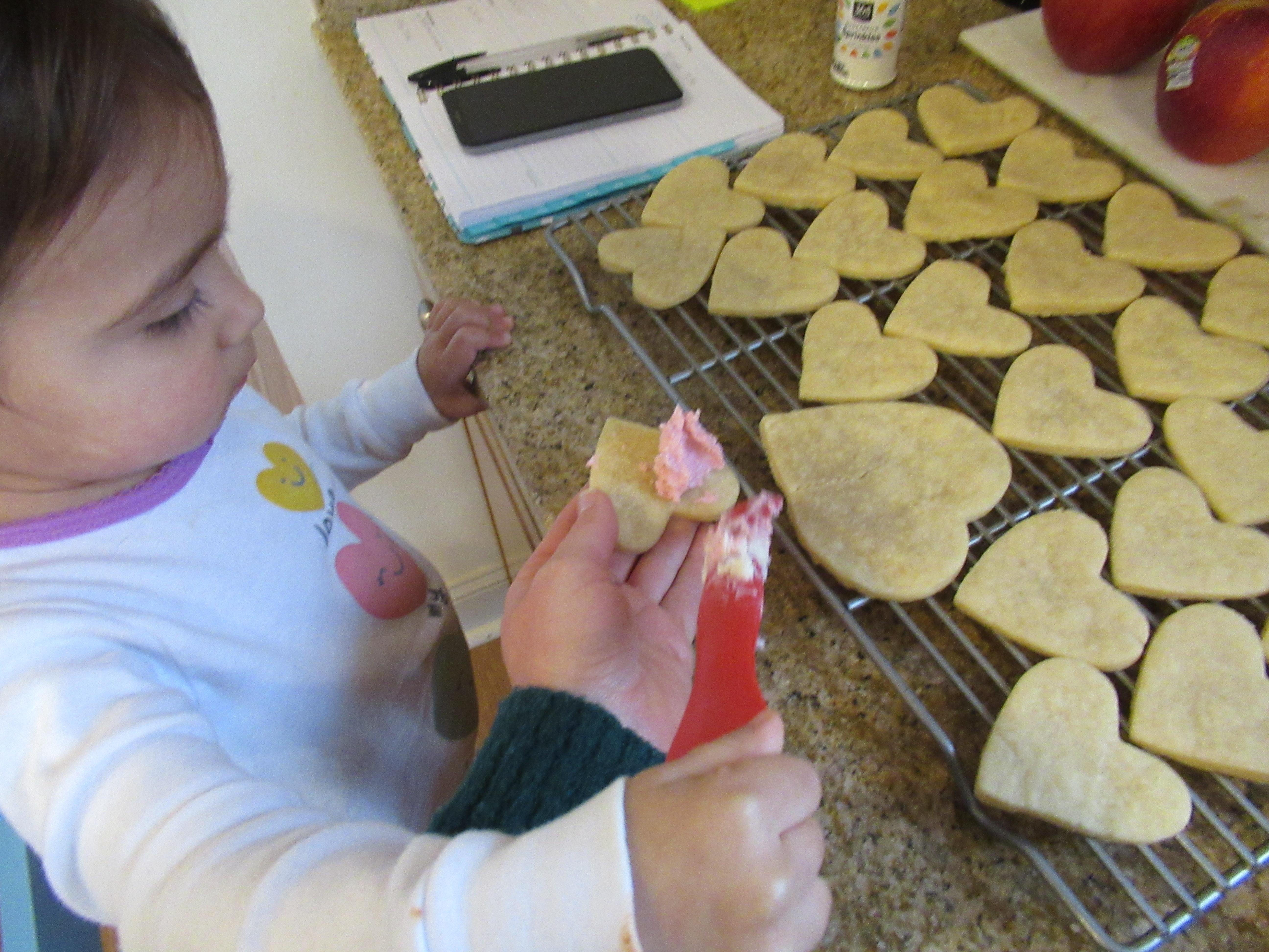 Valentine Cookies (5)