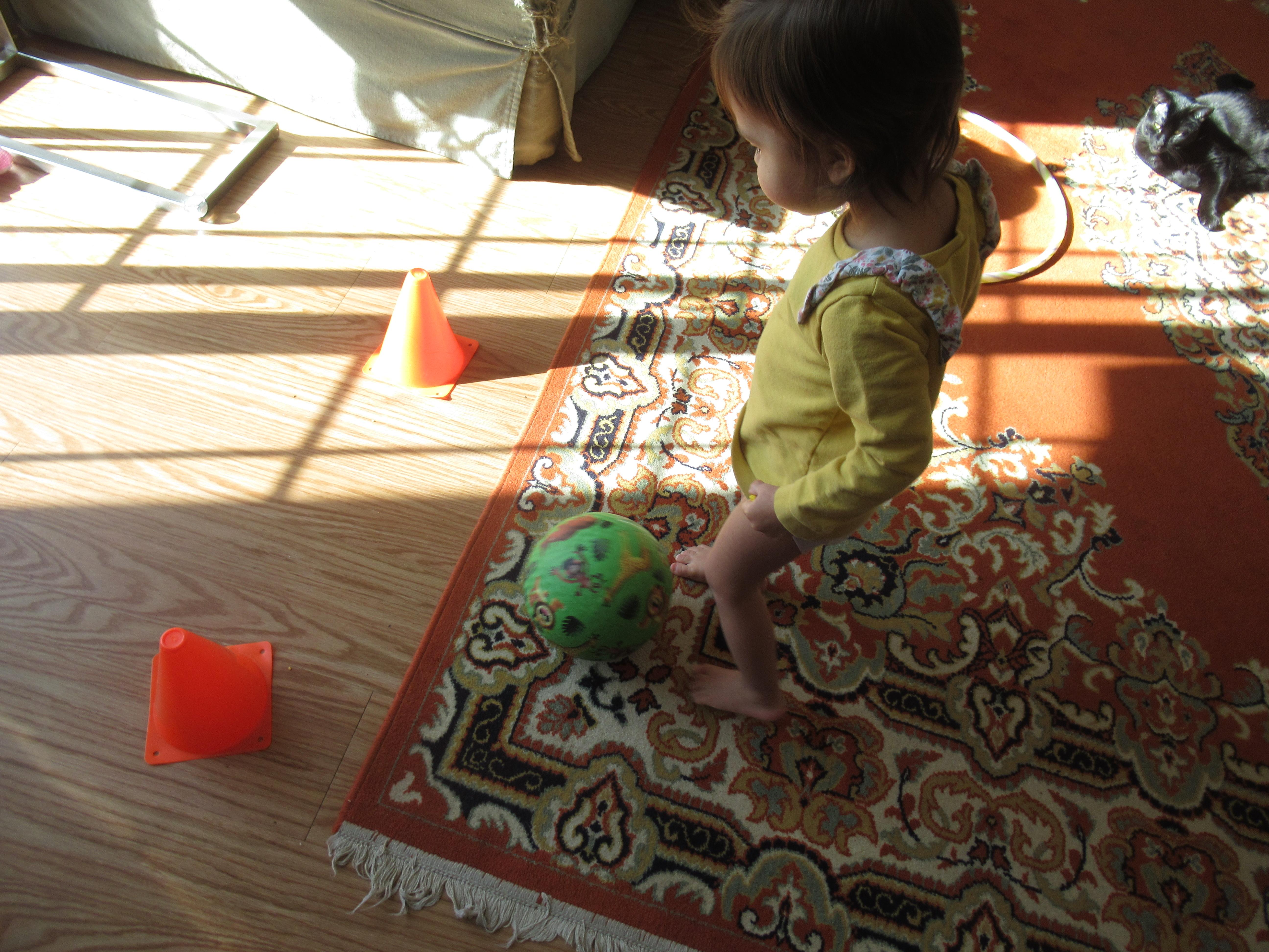 Mini Toddler Olympics (11)