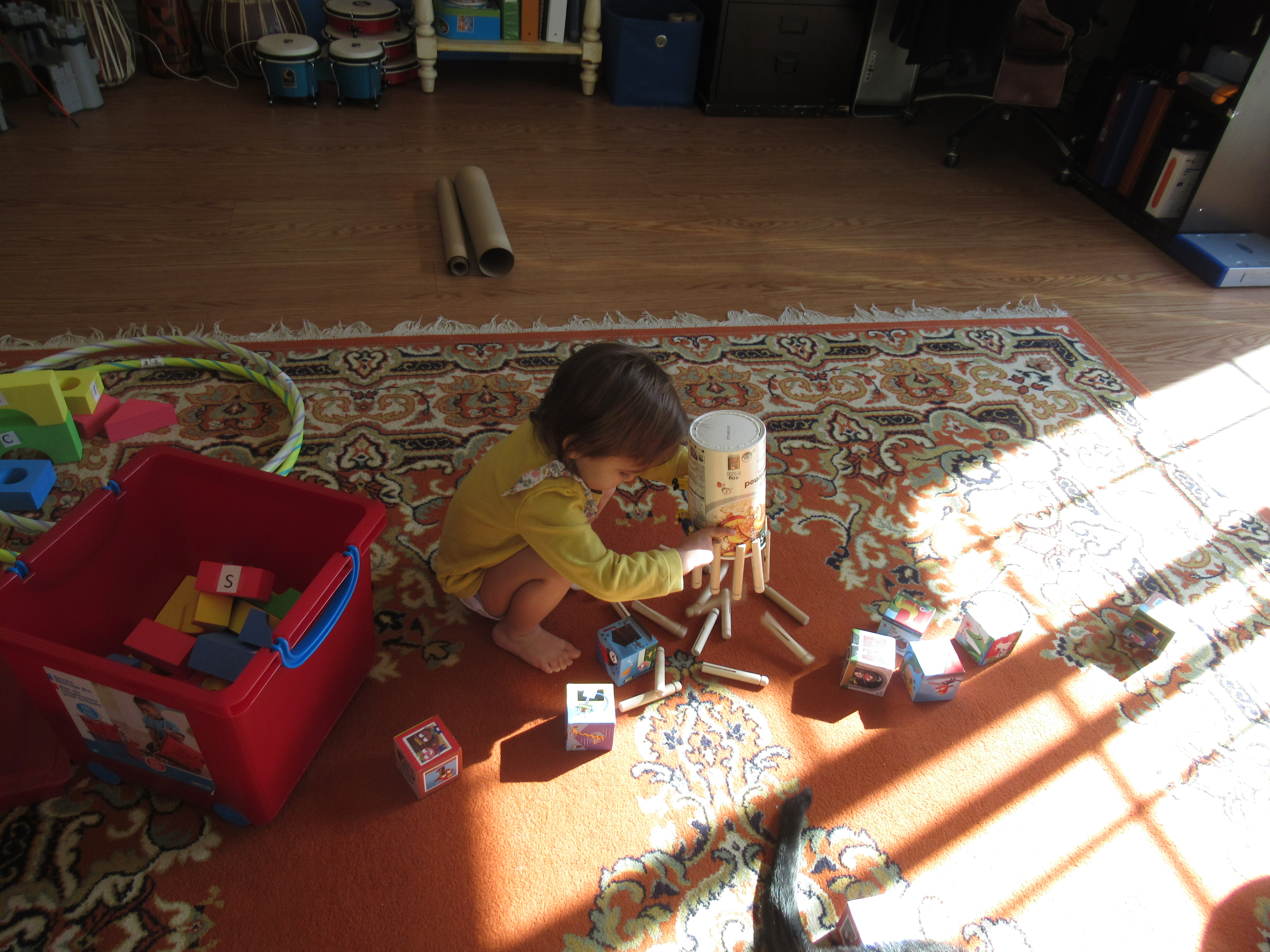 Mini Toddler Olympics (16)