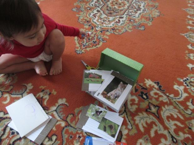 Picture Box (3)