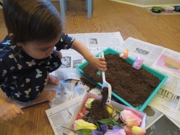 Potting Soil Sandbox (2)