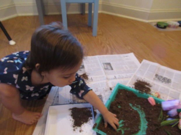 Potting Soil Sandbox (6)