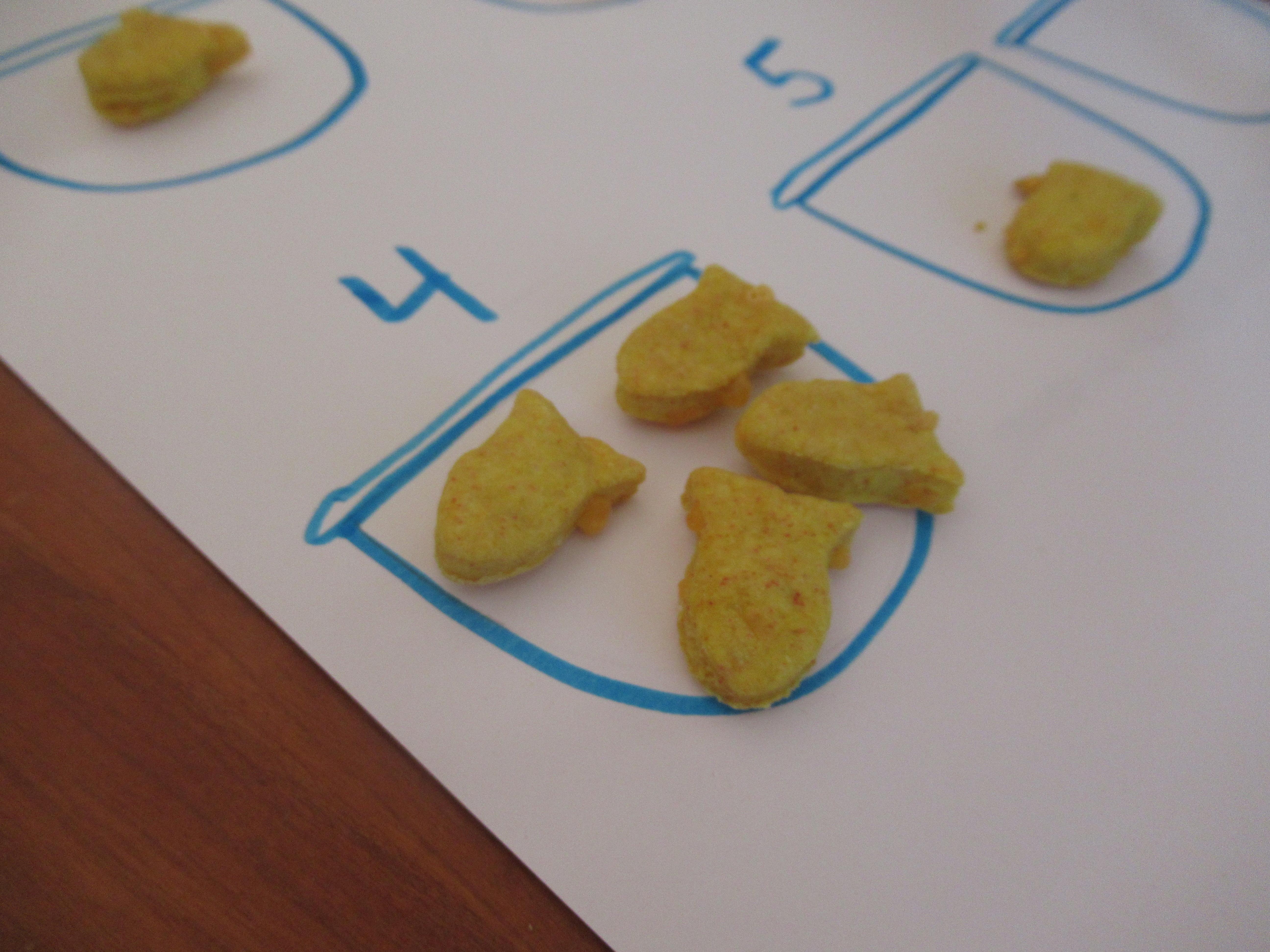 Tweezers & Goldfish (7)