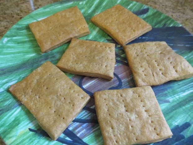 Sledging Biscuit (2)