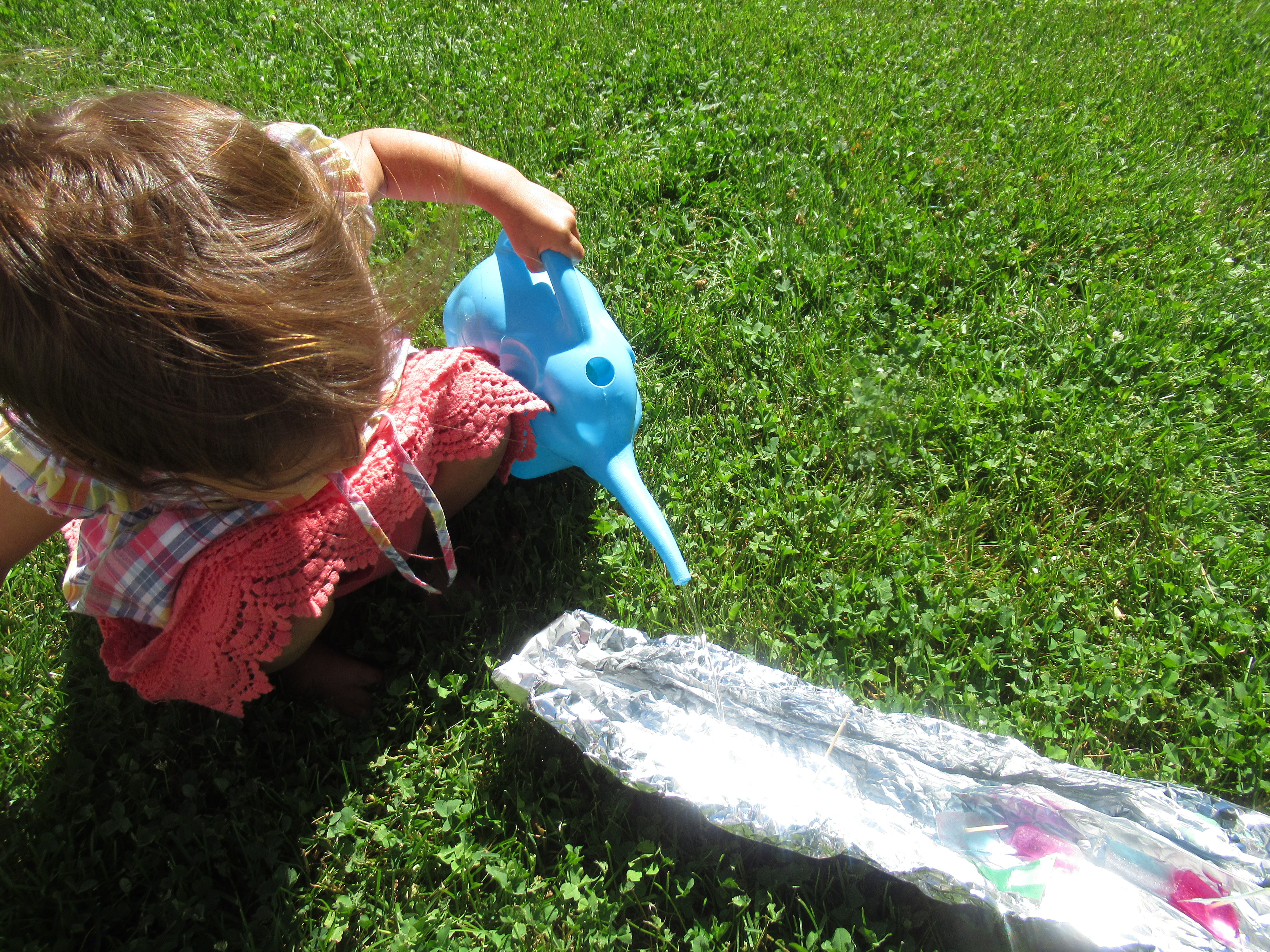 Tin Foil River Ice Boats (6)