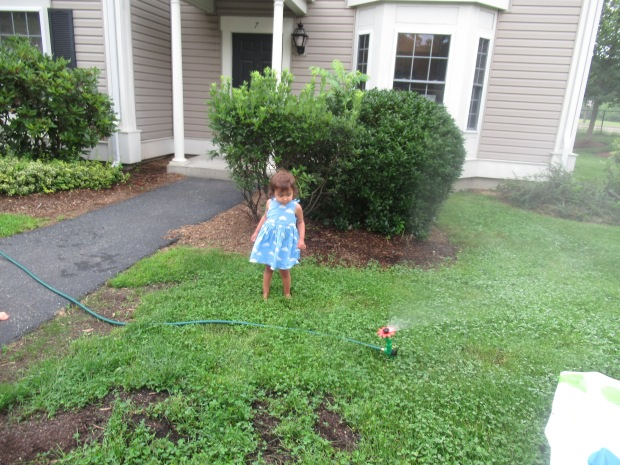 Sprinkler 6 ways (11)